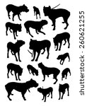set of silhouettes of dog breed ... | Shutterstock .eps vector #260621255