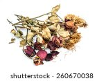 dried roses and chrysanthemums... | Shutterstock . vector #260670038