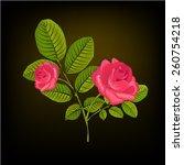 rose on a dark background.... | Shutterstock .eps vector #260754218