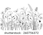 card with wild flowers and... | Shutterstock .eps vector #260756372