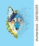 wolf  head in geometric pattern ... | Shutterstock .eps vector #260782355