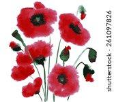 poppy pattern. watercolor   Shutterstock .eps vector #261097826