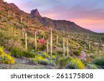 Picacho Peak At Sunset ...