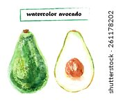 vector set of watercolor... | Shutterstock .eps vector #261178202