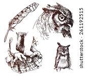 hand drawn owl paws owl owl... | Shutterstock .eps vector #261192515