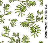 seamless floral pattern   plant ... | Shutterstock .eps vector #261200168