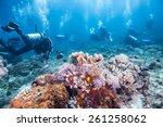 scuba divers passing through... | Shutterstock . vector #261258062