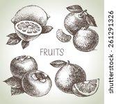 hand drawn sketch fruit set.... | Shutterstock .eps vector #261291326