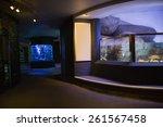lit up fish tank at the aquarium   Shutterstock . vector #261567458