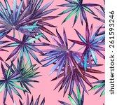 beautiful exotic tropical... | Shutterstock . vector #261593246
