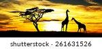 wild animals in africa | Shutterstock . vector #261631526