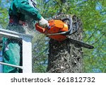 Man Is Cutting A Tree With A...