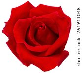 Stock photo red rose isolated on white background 261911048