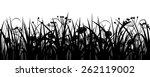 seamless grass  herbs and... | Shutterstock .eps vector #262119002