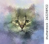 Abstract Portrait Of Cat  Oil...