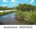 Nature Park Landscape Pond