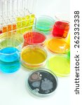 colorful fluid in  glass ware... | Shutterstock . vector #262332338
