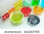 colorful fluid in  glass ware... | Shutterstock . vector #262364705