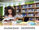 Student Studying In The Librar...