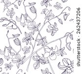 seamless pattern with orchid ...   Shutterstock .eps vector #262437206