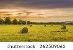 Big Hay Bale Rolls In A Lush...