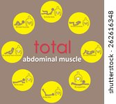 adbomianal muscle on yellow... | Shutterstock .eps vector #262616348