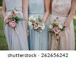 bridesmaid dresses in pastel... | Shutterstock . vector #262656242