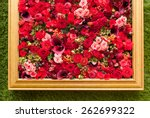Stock photo abstract background of flowers close up 262699322