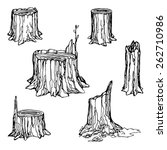 hand drawn stumps set isolated... | Shutterstock .eps vector #262710986