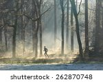 man trail running in the forest ... | Shutterstock . vector #262870748
