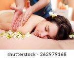 girl in a beauty salon doing... | Shutterstock . vector #262979168