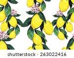 beautiful vintage seamless... | Shutterstock . vector #263022416
