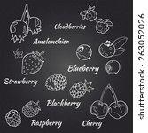 berries set. vector berries on... | Shutterstock .eps vector #263052026