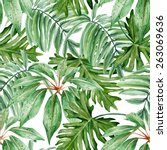tropical leaves  dense jungle.... | Shutterstock .eps vector #263069636