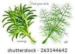 fresh green herbs dill and... | Shutterstock .eps vector #263144642