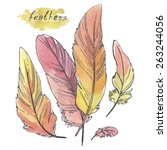 feathers  watercolor... | Shutterstock .eps vector #263244056