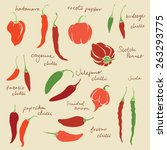 set of different chili peppers... | Shutterstock .eps vector #263293775