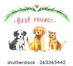 Stock vector golden labrador retriever puppy and tricolor havanese and cat best friends illustration charming 263365442