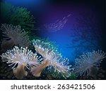 The Underwater World Of Fish...
