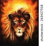 Lion Close Up Portrait  Lion...