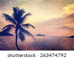 silhouette of palm tree at... | Shutterstock . vector #263474792