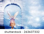 angel inside a gate  mystical... | Shutterstock . vector #263637332