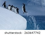 Penguin Jumps