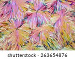 colorful micro crystals in... | Shutterstock . vector #263654876