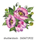 watercolor illustration of a... | Shutterstock . vector #263671922