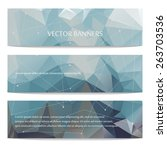abstract geometric polygonal... | Shutterstock .eps vector #263703536