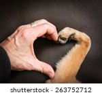 Stock photo a person and a dog making a heart shape with the hand and paw 263752712