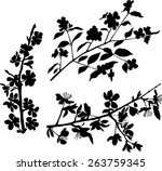 branches collection | Shutterstock .eps vector #263759345
