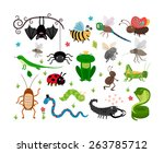 Set Of Cute Insects And...