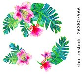 exotic tropical flowers. a set... | Shutterstock . vector #263807966